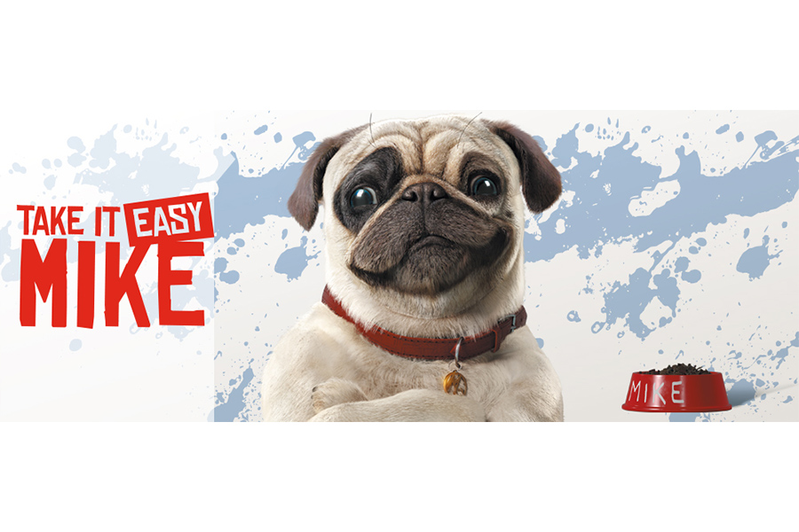 Greenlight for TeamTO's TAKE IT EASY MIKE with France Télévisions and SUPER RTL