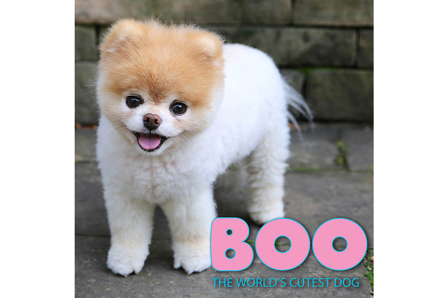 """""""BOO"""" adds Bare Tree Media, Bradford Exchange, Ecell Global, Nobleworks, and TabTale"""