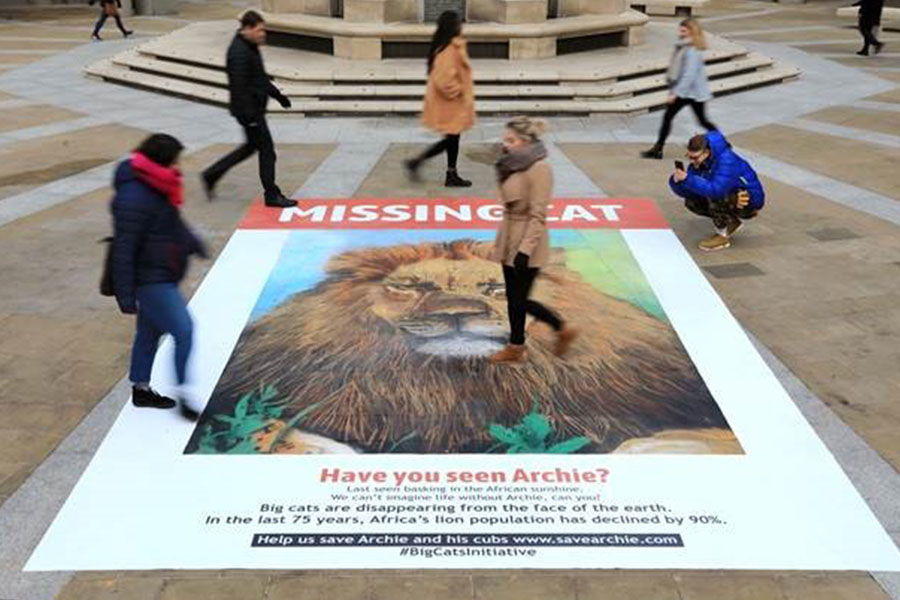 National Geographic hits headlines as Big Cats Initiative takes it to the street